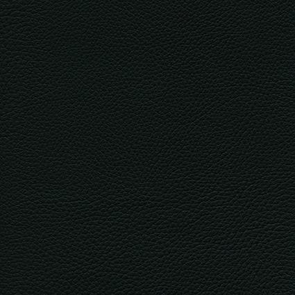 Ginkgo Anthracite 013 32 002