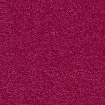 Ginkgo Begonia 013 32 046