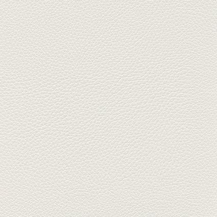 Ginkgo Blanc 013 32 019