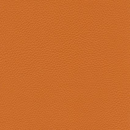 Ginkgo Citrouille 013 32 015