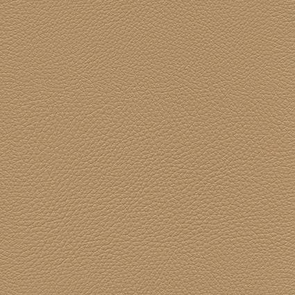 Ginkgo Dune 013 32 023