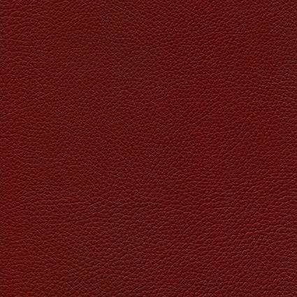 Ginkgo Morgon 013 32 016