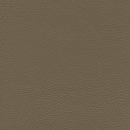 Ginkgo Terre 013 32 048