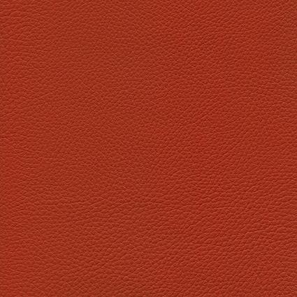 Ginkgo Tomette 013 2 014