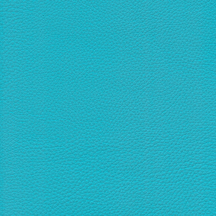 Ginkgo Turquoise 013 32 047