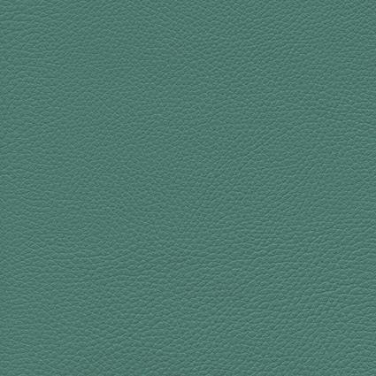 Ginkgo Vert 013 32 006
