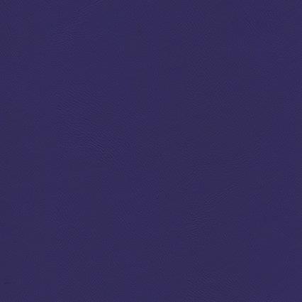 Comète Iris