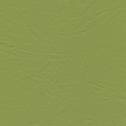 Mundial-Olive