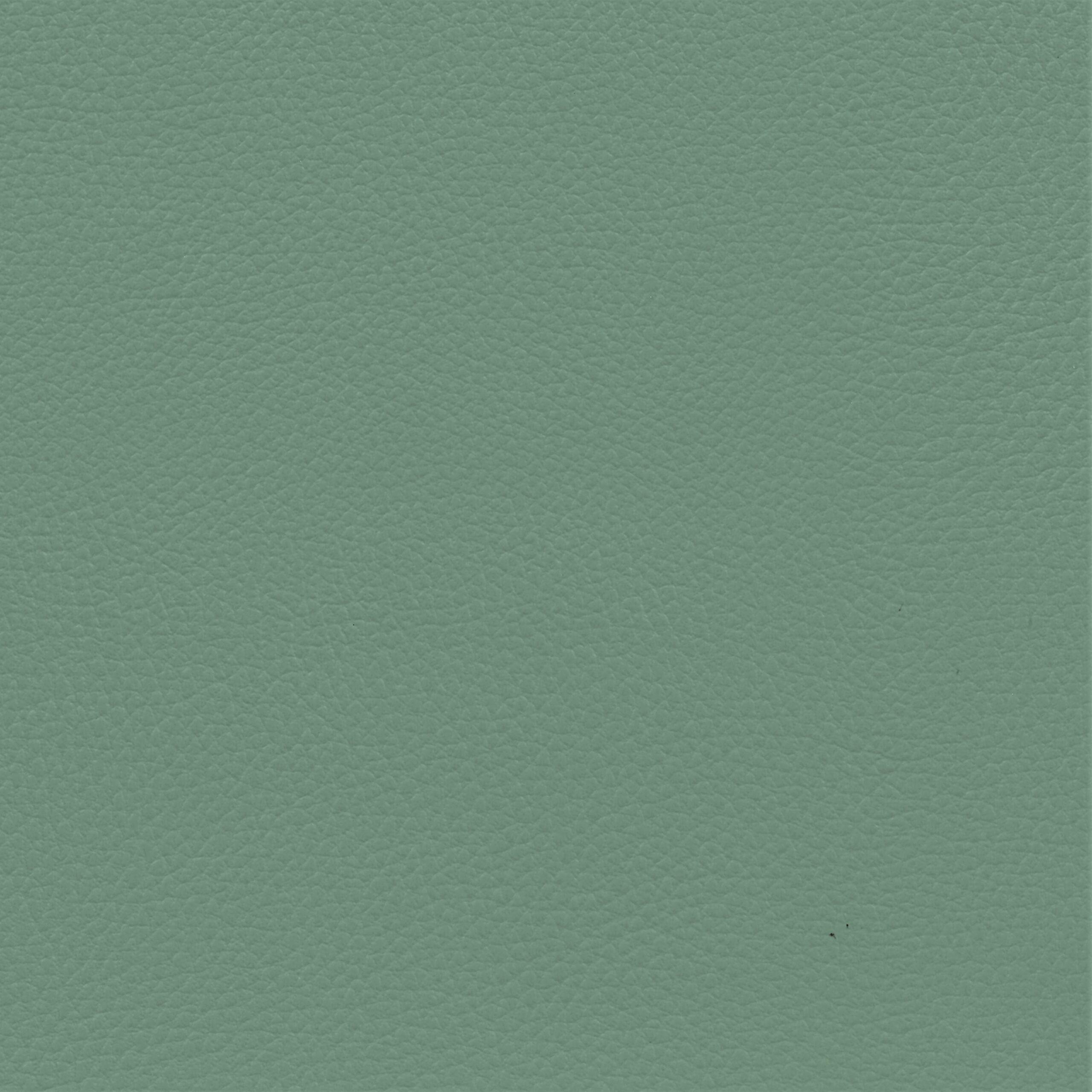 Ginkgo Celadon - Cotting / calme sophistique