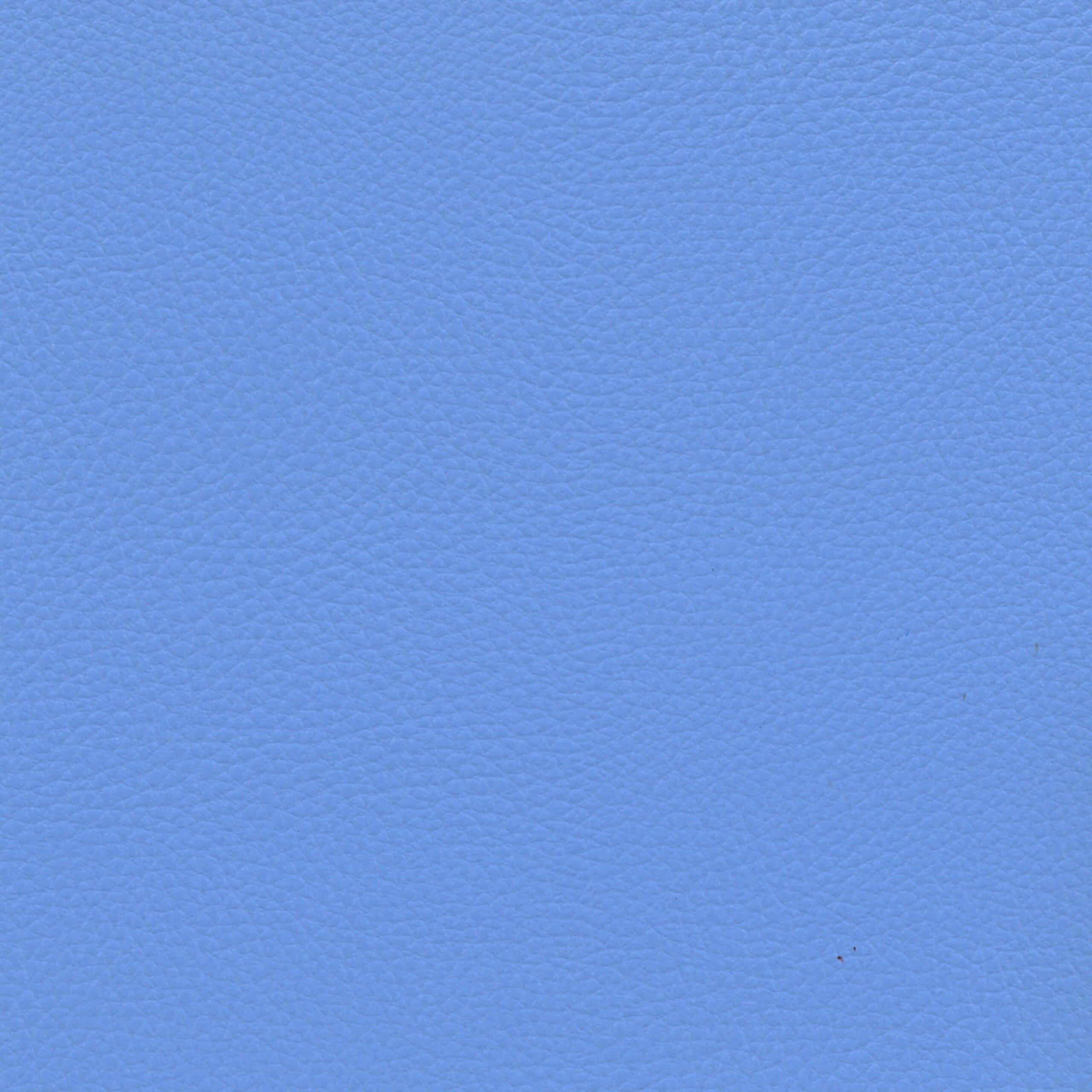Ginkgo Celeste - Cotting / Happening