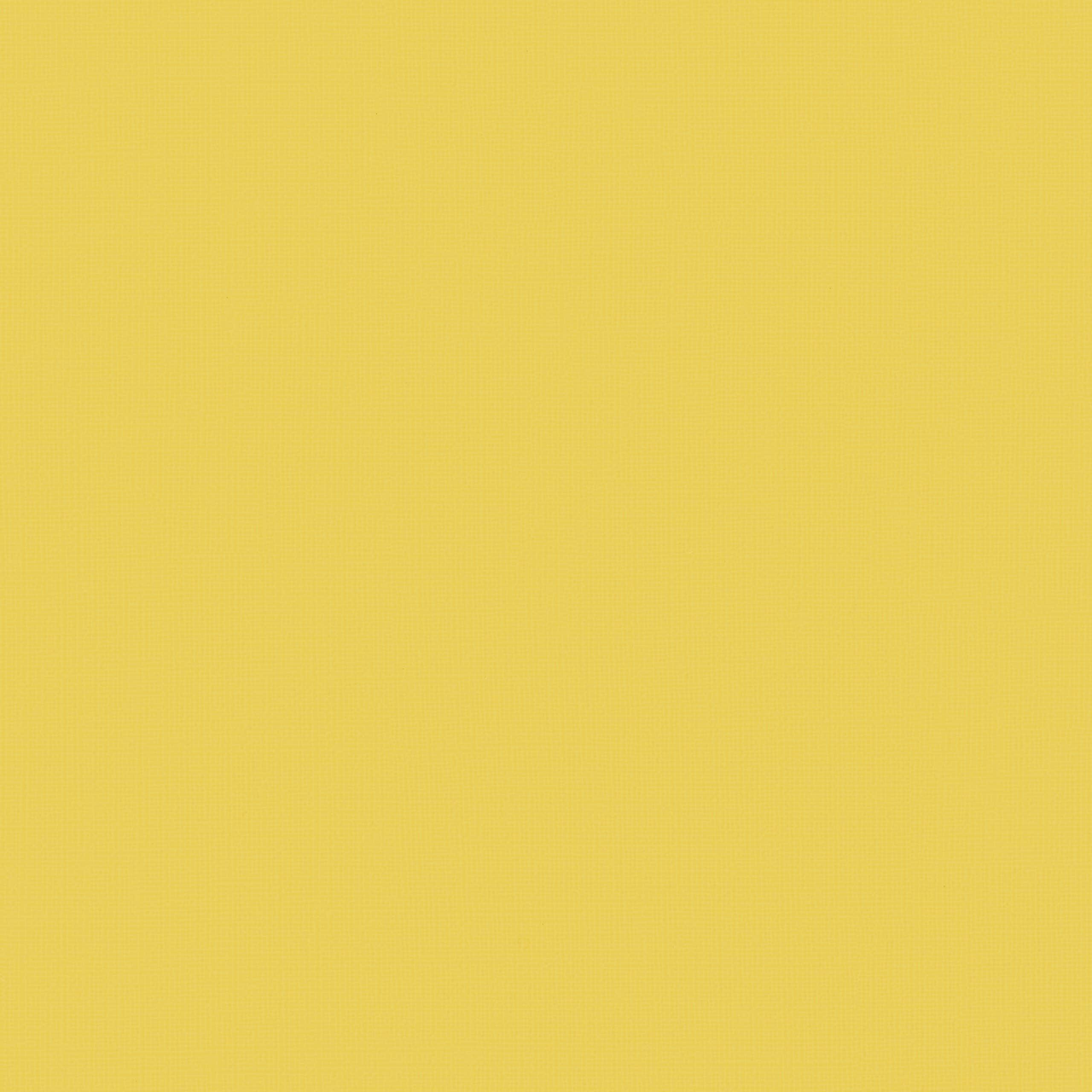 Cotting patch Kalytera Citron